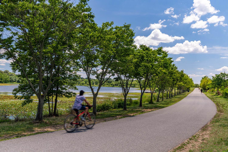 The Hiker Biker Trolley Trail